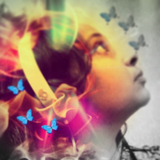 O my stupid pretty butterflies