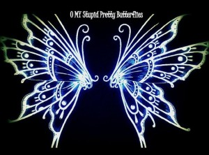 O My Stupid Pretty Butterflies