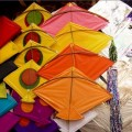 Beautiful Kites in India