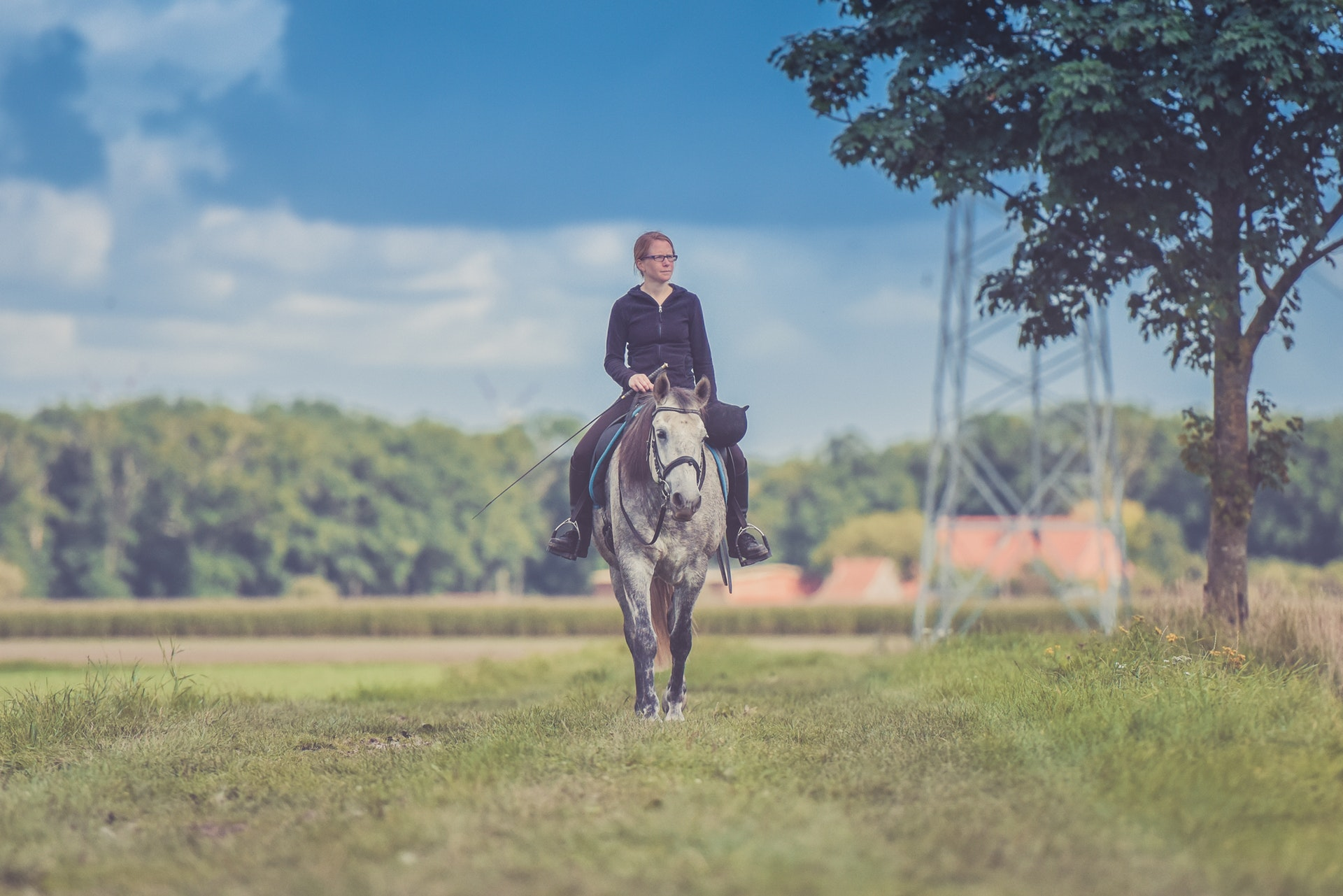 A Beginner's Guide to Horseback Riding