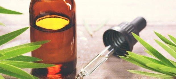 Tea Tree Oil for Acne – All You Need to Know