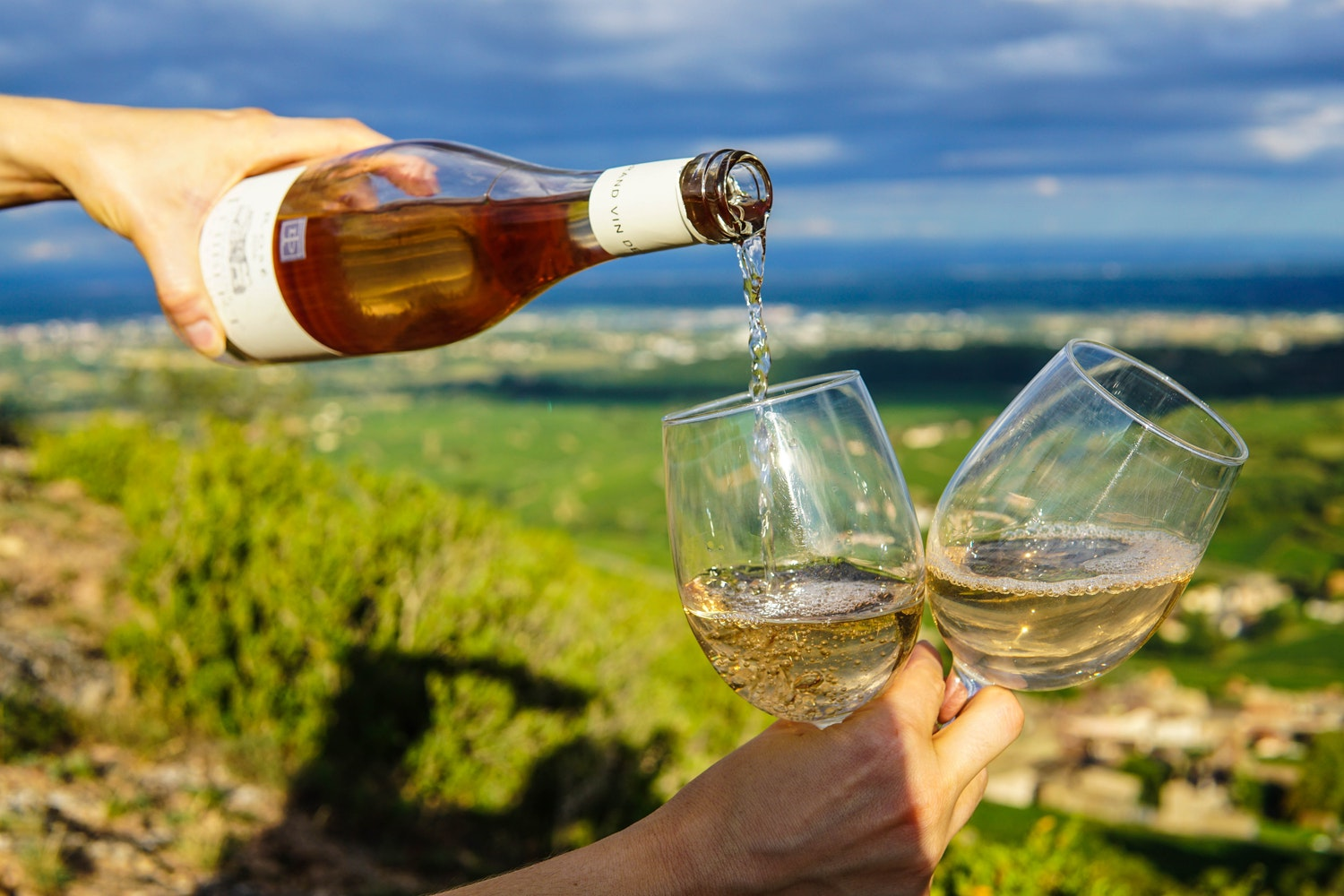 Your Complete Guide on What to Expect on a Wine Tasting Experience