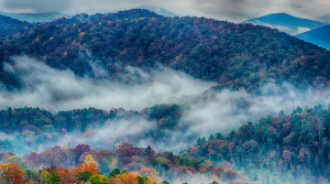 Sevierville: Family Fun in the Great Smoky Mountains