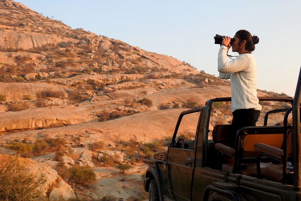 Hills of Jawai: A Sacrosanct Habitat for India's Leopards